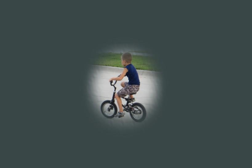 lewis bike copy